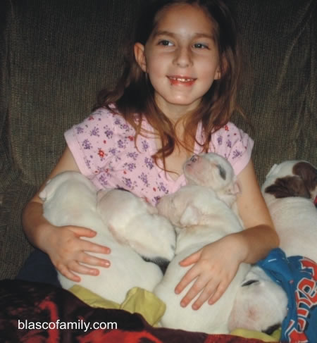 Kids and American Bulldog puppies