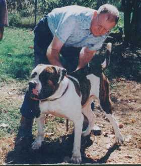 John D. Johnson with an American Bulldog