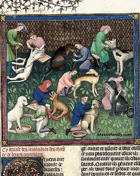 Medieval European dog husbandry